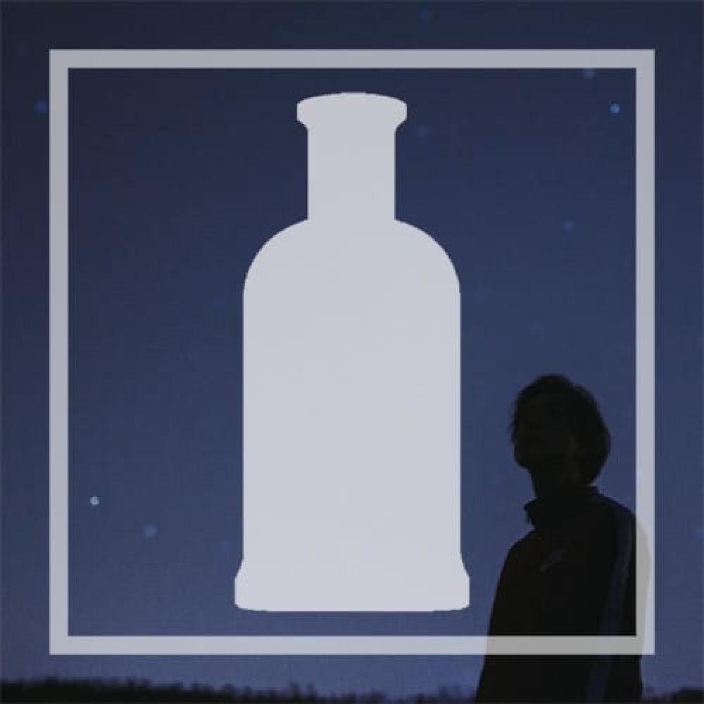 Vegan alternative to Boss Bottle Night