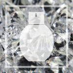 Vegan alternative to Armani Diamonds