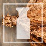Vegan alternative : Tobacco Oud Tom Ford