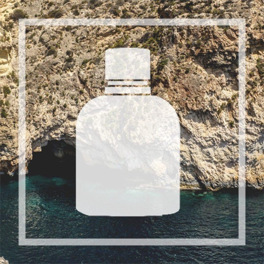 Equivalent Dolce&Gabbana Pour homme scent. Vegan alternative to D&G man