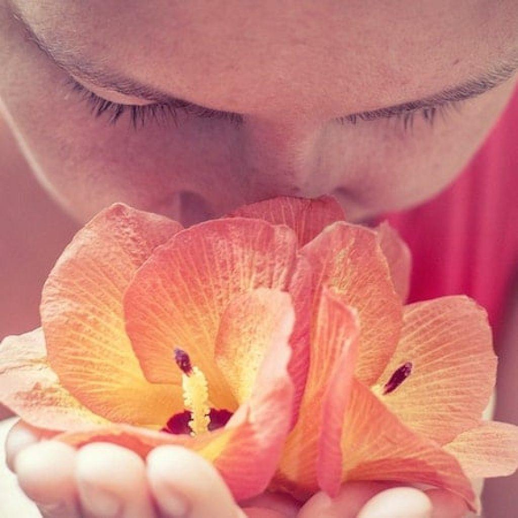 how do smells affect us?