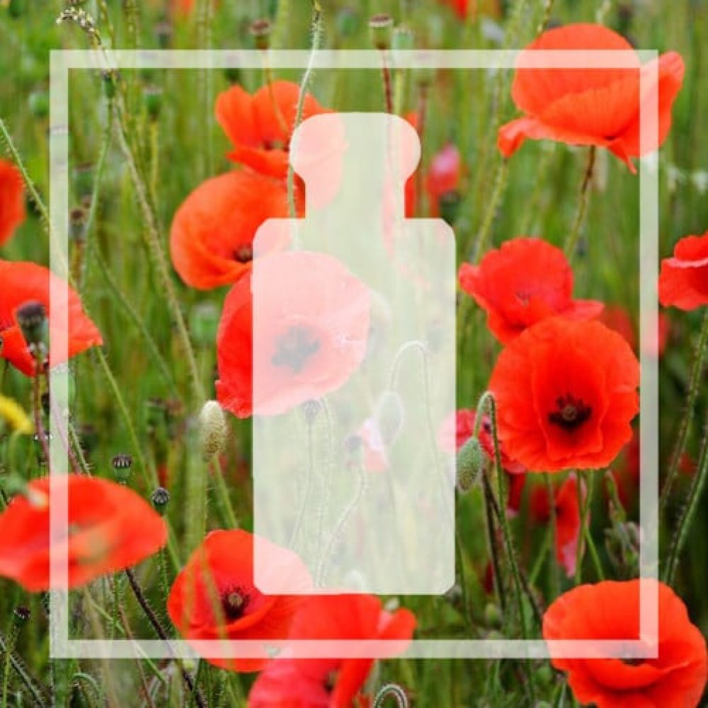 Vegan alternative to Poppy & Barley by Jo Malone