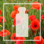 Vegan alternative to Poppy & Barley by Jo Malone